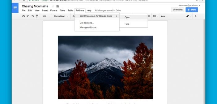 capture d'écran wordpress et google docs
